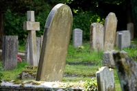 Cemetery Management and Compliance